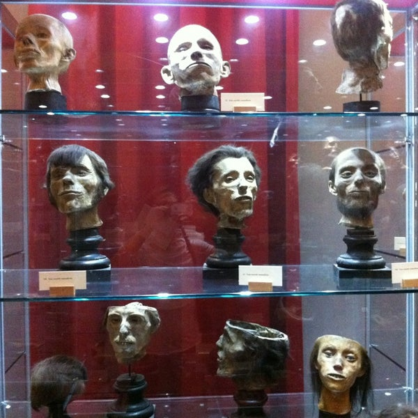 Museo_gorini