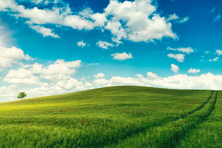 Campi Elisi il paradiso degli antichi secondo la mitologia